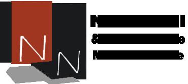 Logo-Nefussi-nova